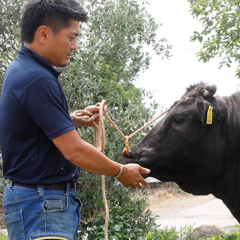 近江牛ホルモン焼肉カメチク 代表写真